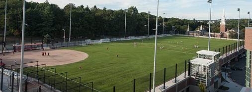 Rooftop Field