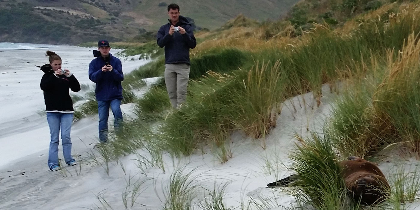 Students photographing wildlife in the beach dunes