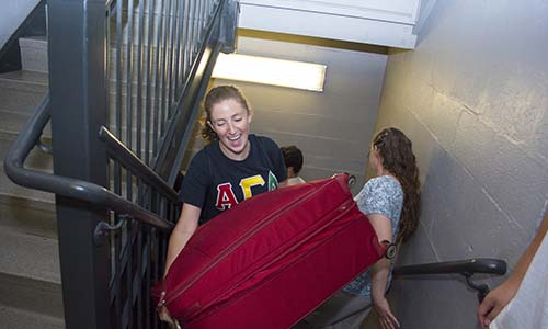 Students helping out freshman during move-in day
