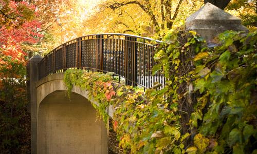 WPI Earle Bridge