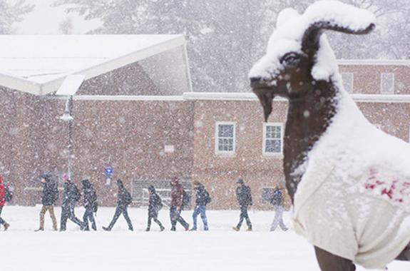 Snowy Gompei statue
