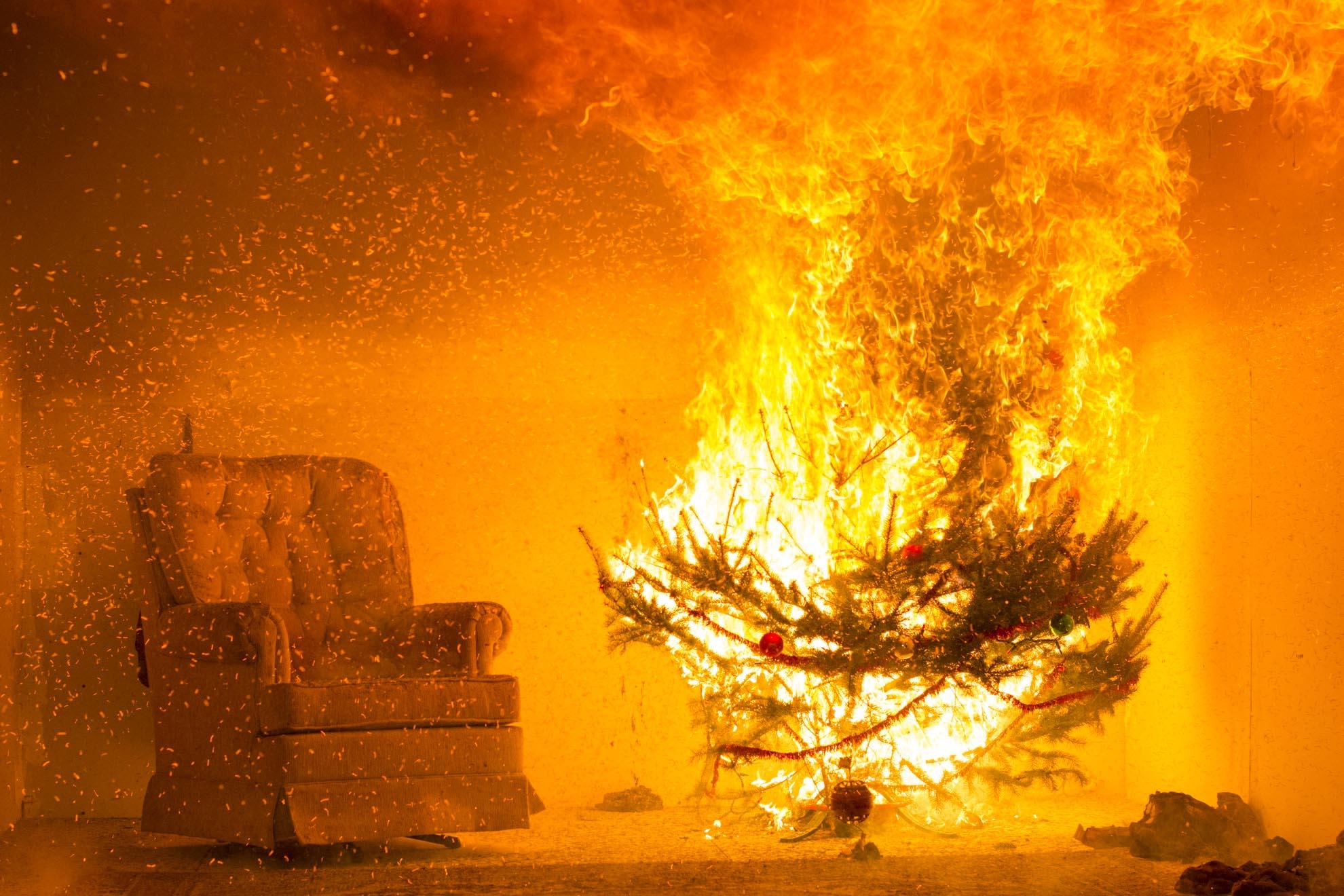Avoid a Holiday Hazard: WPI Demonstrates Christmas Tree Safety ...