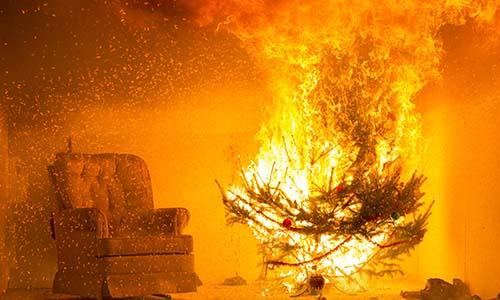 WPI Demonstrates Christmas Tree Safety with a Live Burn