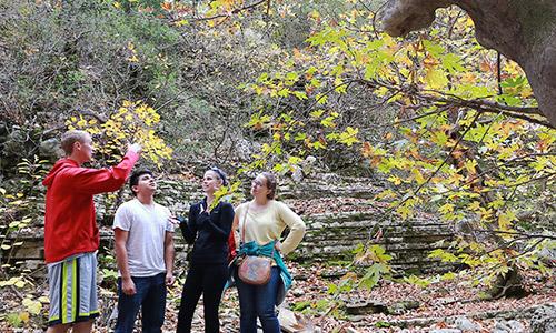 ARG team at the Osumi Canyon