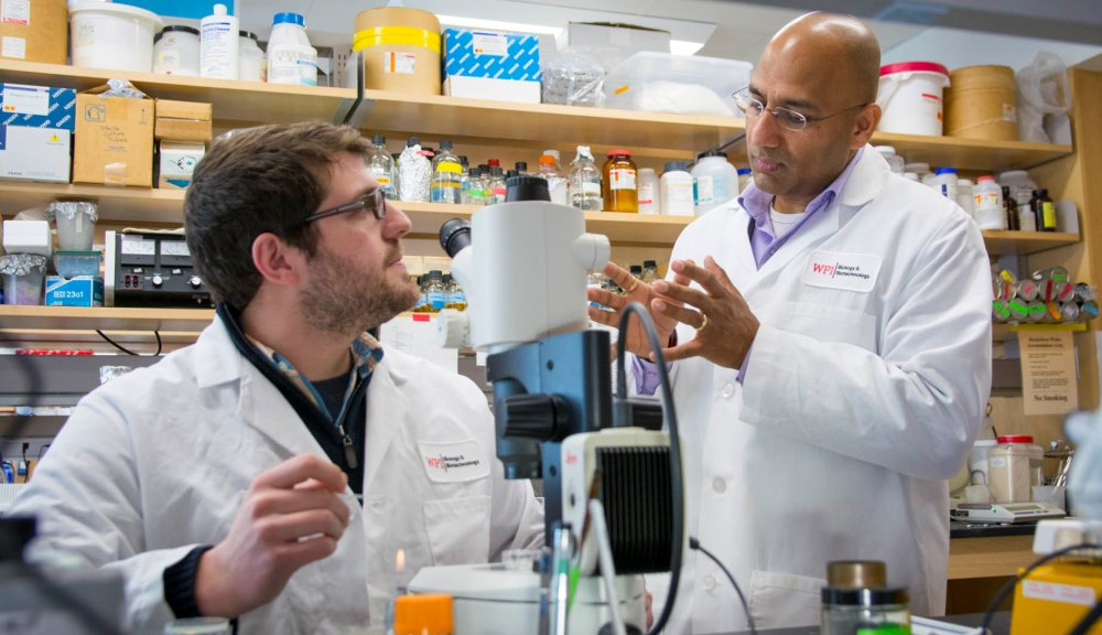 From left, Douglas Reilly, a PhD candidate in biology and biotechnology, and Professor Jagan Srinivasan discuss results from a recent experiment with C. elegans.