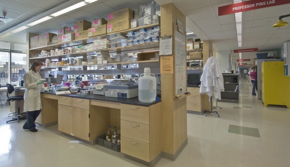 "A lab bay within the Life Sciences and Bioengineering Center with a researcher at work to the left and an overhead sign saying ""Pins Lab"" to the right"