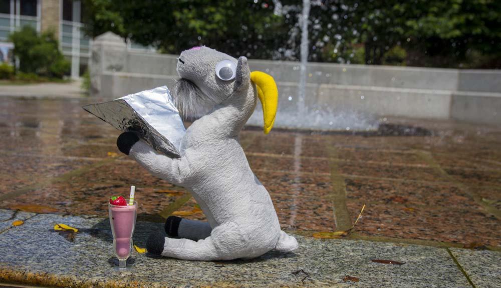 Gompei mascot