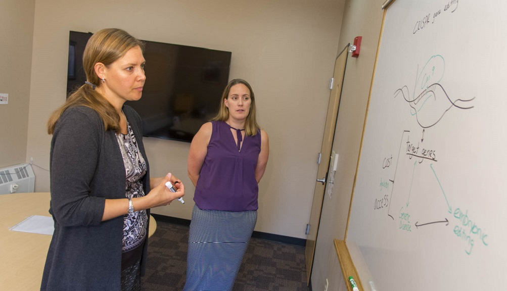 Natalie Farny and Patricia Stapleton stand in front of a white board with information on CRISPR. Farny is holding a marker and is wearing a gray sweater with black and white shirt; Stapleton is wearing a purple shirt and blue striped skirt.