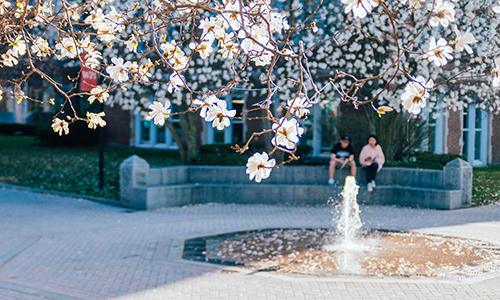 The fountain in spring at WPI