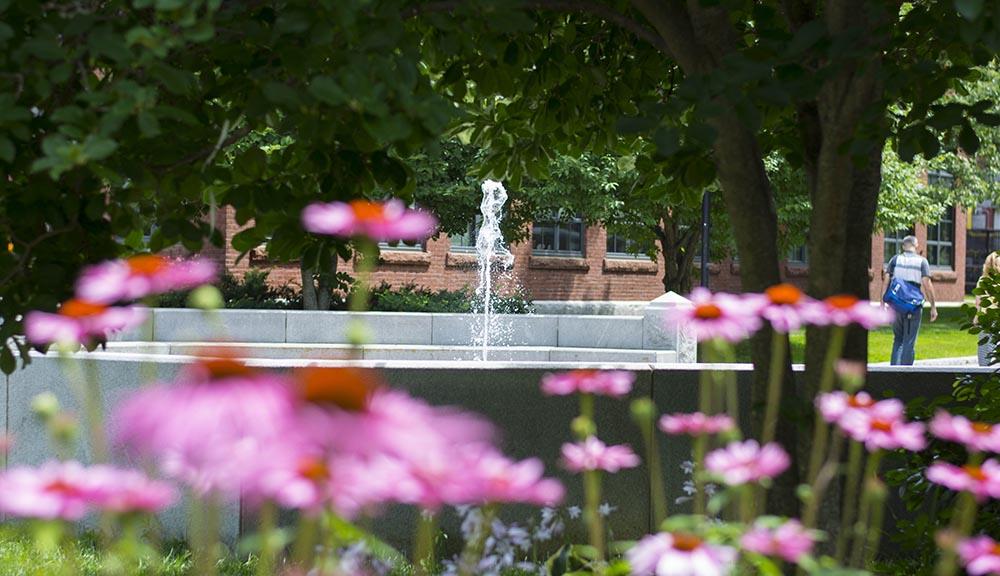 WPI summer campus