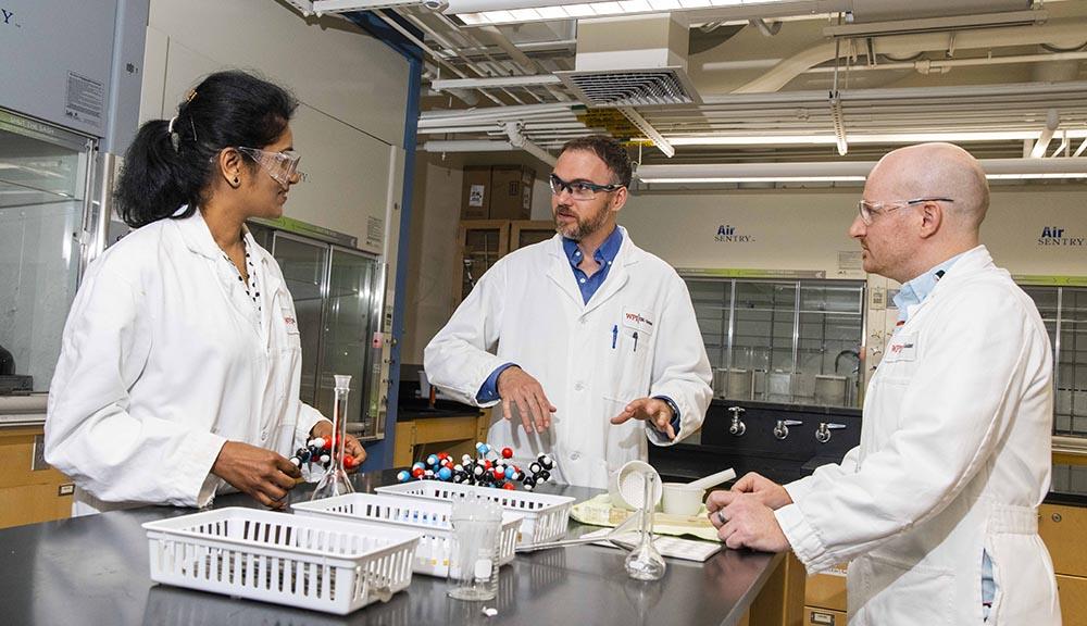 WPI chemistry professors