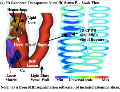 diagram of image based computational analysis