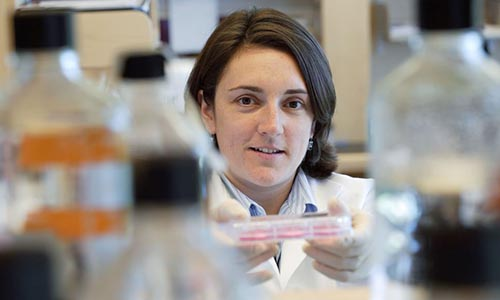 WPi researcher in lab