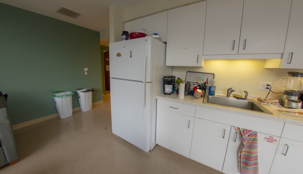 East hall apartment style 2, kitchen