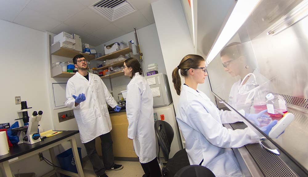 students talking while other student works in fume hood