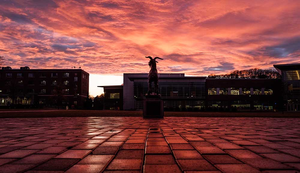 A photo taken from behind the Proud Goat statue on the Quad at sunset.