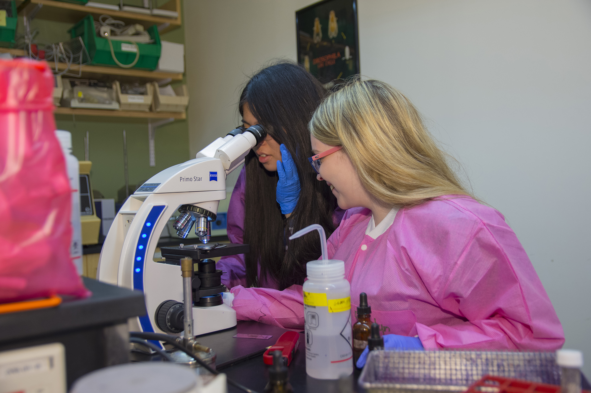 Students looking through a microscope in a lab.