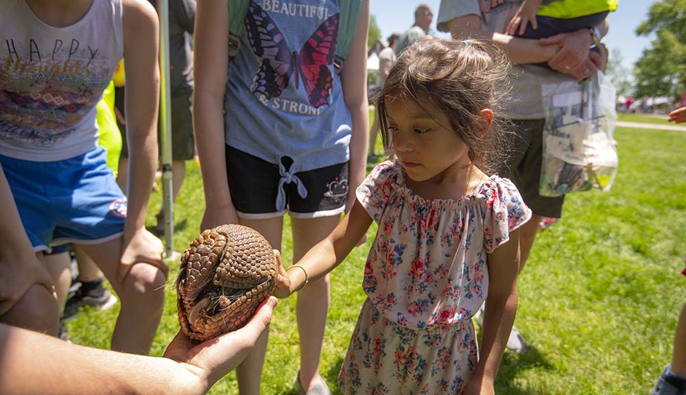 A young girl reaches out to touch an armadillo held by a TouchTomorrow exhibitor.