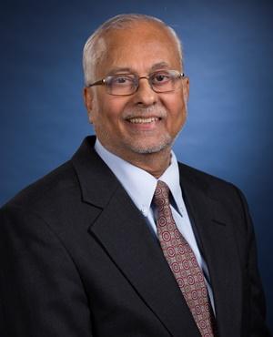 Head and shoulders photo of L. Ramdas Ram-Mohan alt