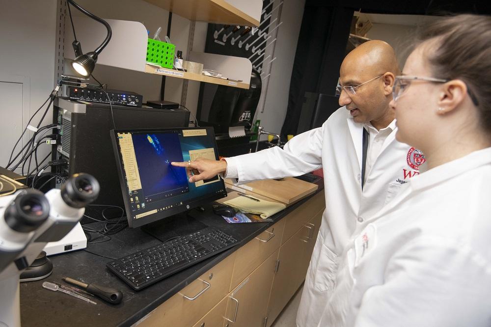 Jagan Srinivasan, associate professor of biology and biotechnology, reviews C. elegans images with research associate Elizabeth Diloreto.