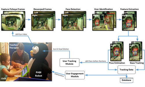 User interaction workflow of the PABI™.
