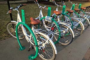A line of white bicycles that are part of the Gompei's Gears bike share program.