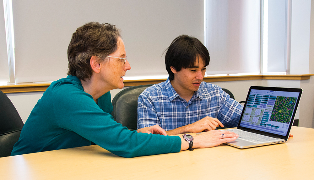 Students in WPI's bioinformatics program learn cutting-edge approaches in areas such as artificial intelligence (AI) and machine learning, next-generation sequencing, bioinformatics, systems biology, high-performance computing, big data mining, and vis
