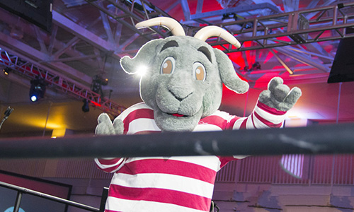 Gompei goat WPI mascot