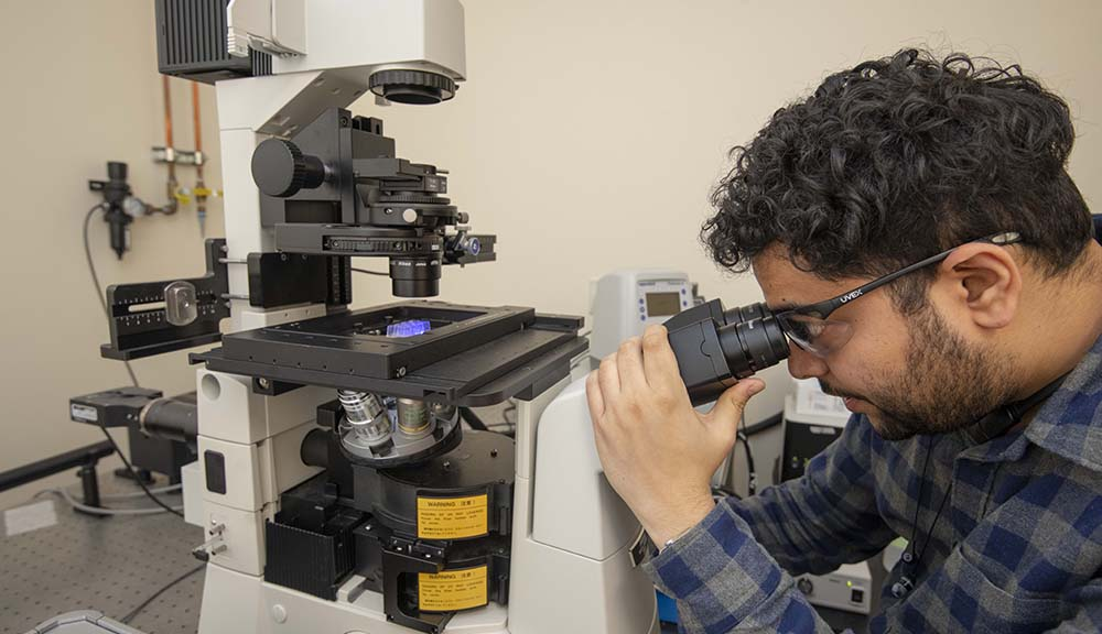 A student wearing safety glasses looks into a microscope.