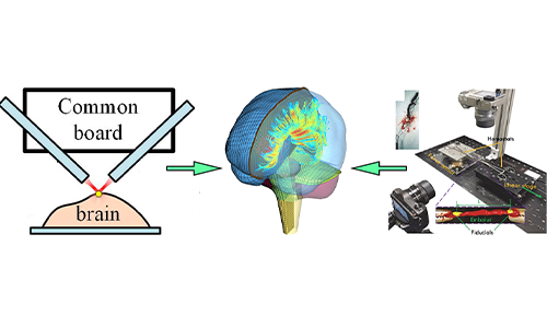 Multi-scale mechanical characterization and modeling of the brain for injury prevention alt