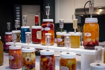 "Rosenstock calls Fermentophone ""open-ended art with a serendipitous result. alt"