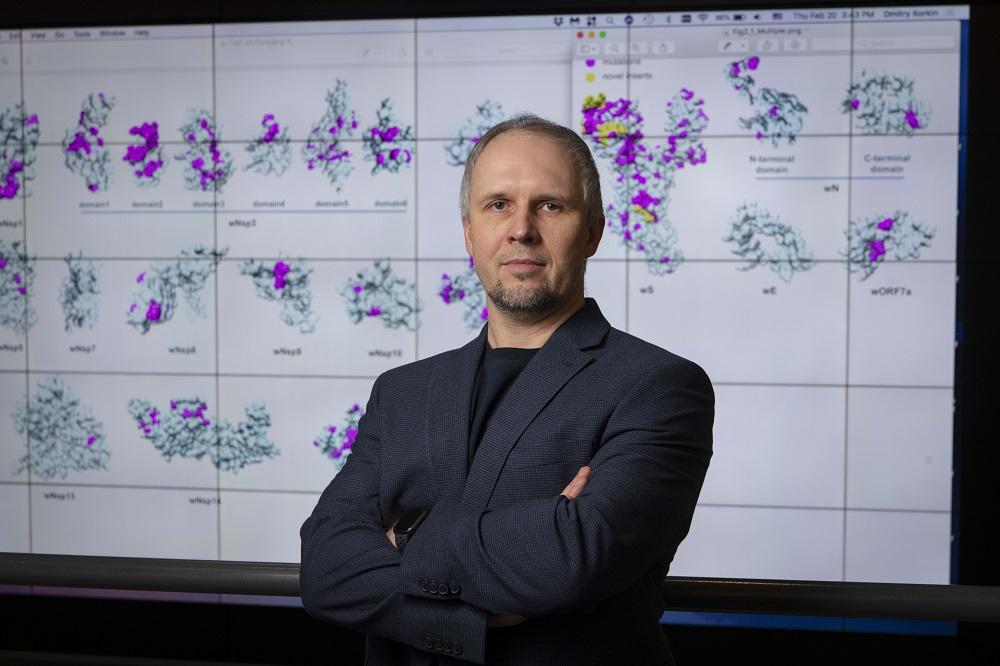 WPI bioinformatics researcher Dmitry Korkin with 3D models of the novel coronavirus.