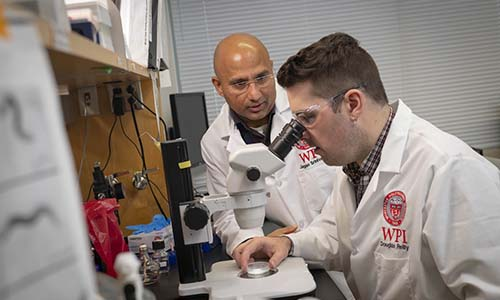 WPI doctoral student in lab