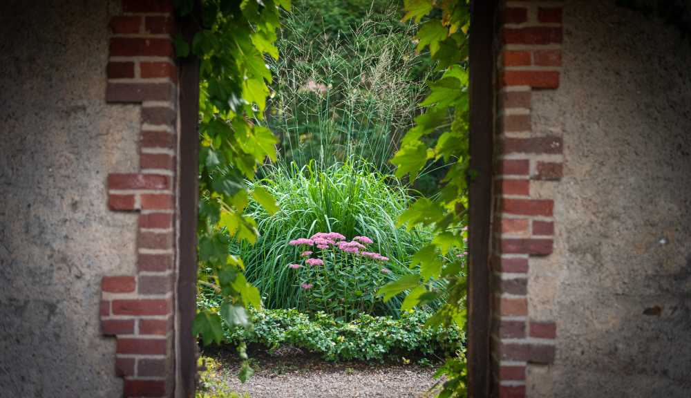 A photo of shrubbery and flowers framed by brickwork in Higgins Gardens.