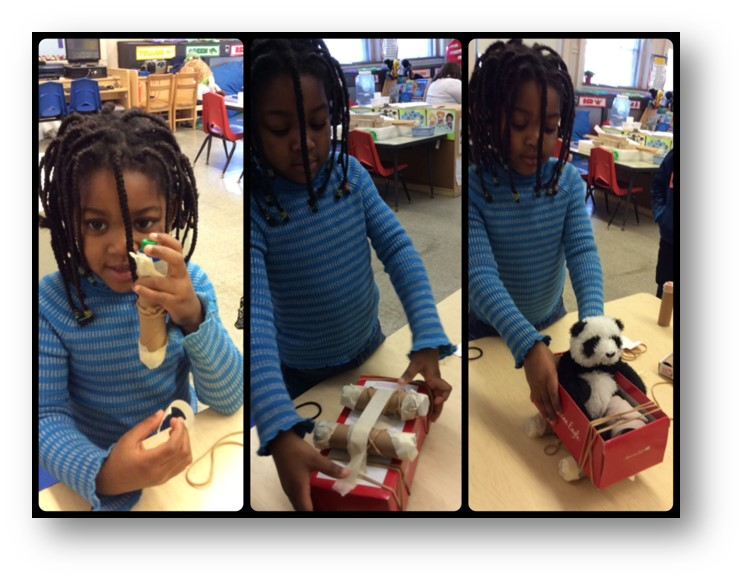 Seeds of STEM, Problem Panda, Prek, Preschool, STEM Curriculum