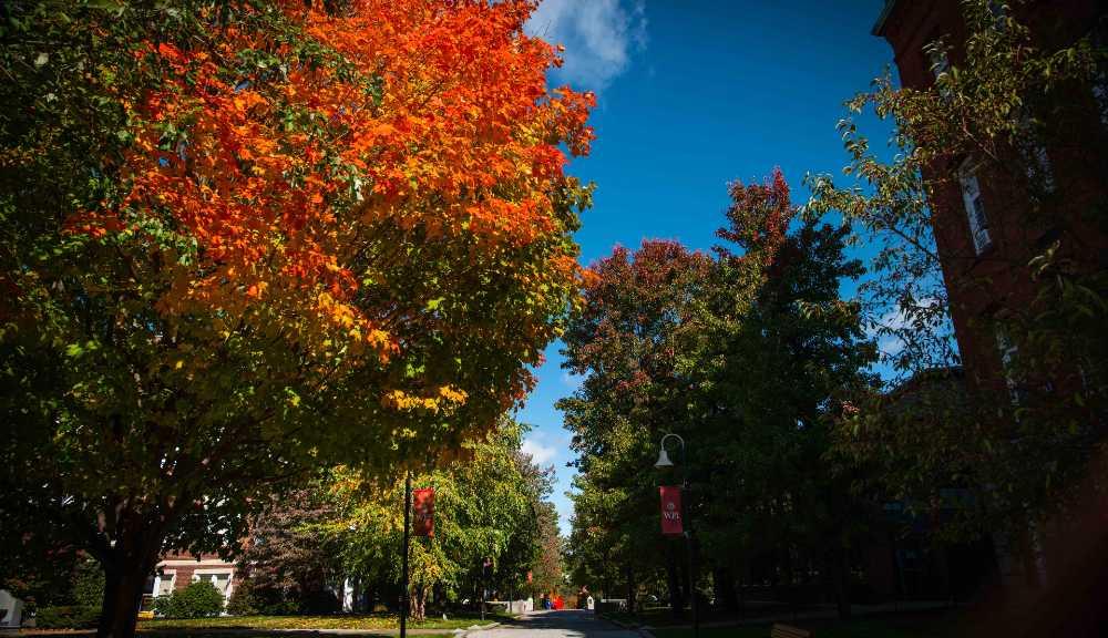 A photo of fall foliage on WPI's campus.