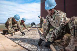 The Army Corps of Engineers is the world's largest public engineering, design and construction management agency.