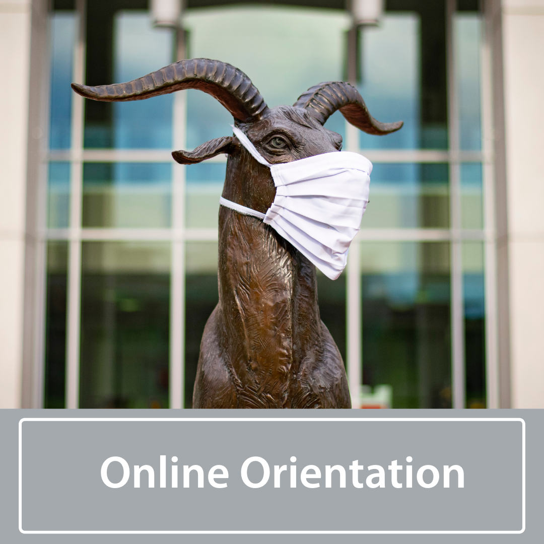 online orientation graphic with gompei goat mascot