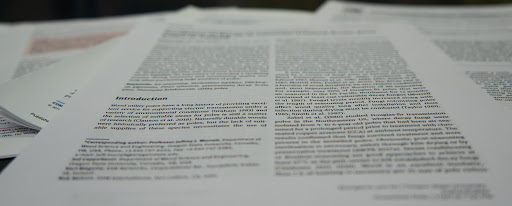 Research papers from current undergraduate students