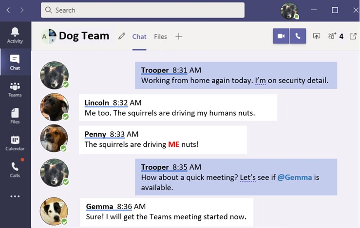 Sample Teams chat session with dogs