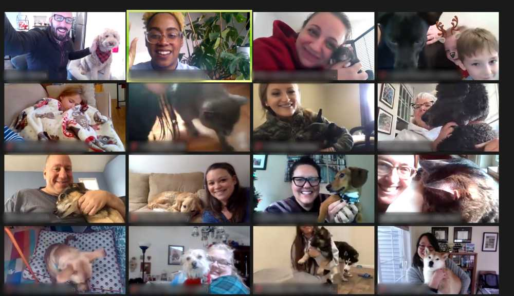 A screenshot of a Zoom meeting with members of the WPI community and their pets.