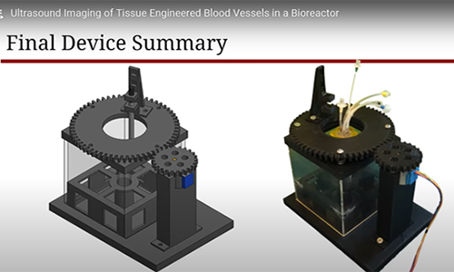 Provost Final Device Summary