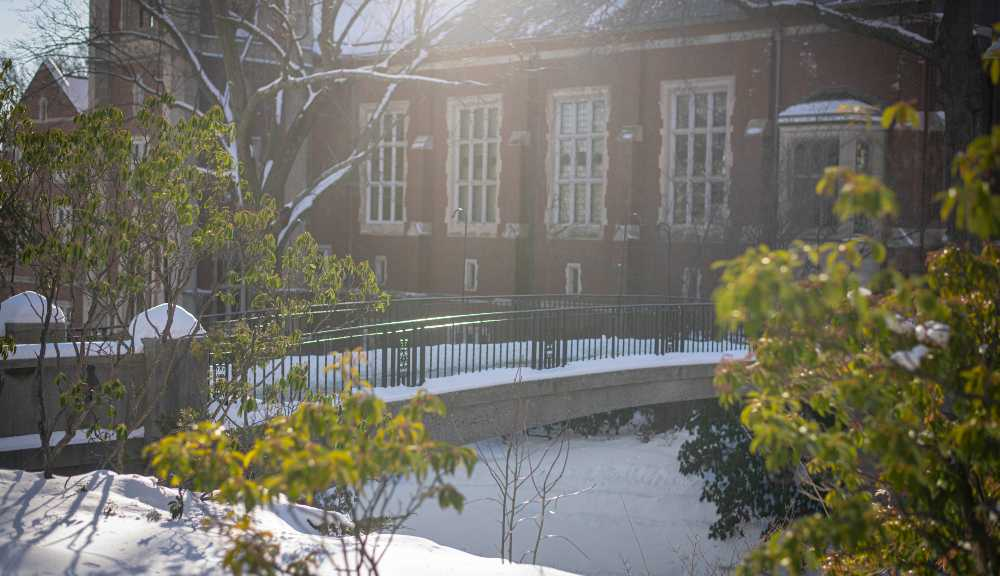 A photo of Earle Bridge covered in snow with some greenery and sunlight.