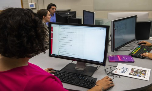 STUDENT IN A PINK SWEATER  VIEWING A COMPUTER SCREEN