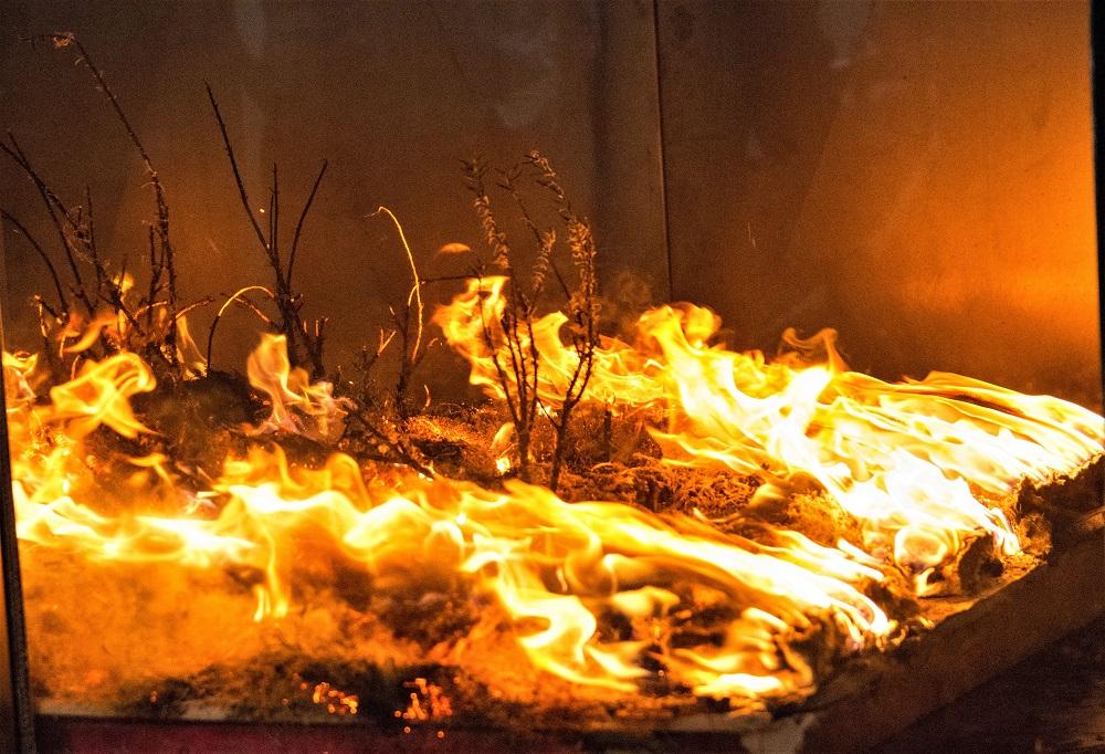Wildfire simulation at WPI