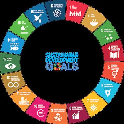 UN SDG wheel logo