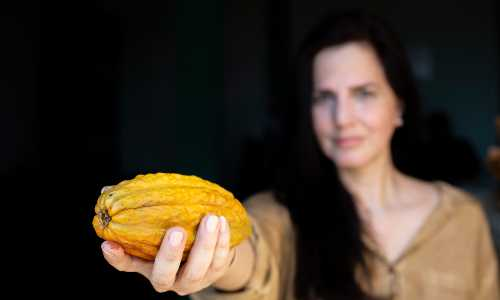 Leila Carvajal holds an unopened cocoa plant toward the camera.