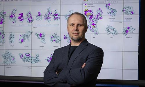 WP Professor Dmitry Korkin