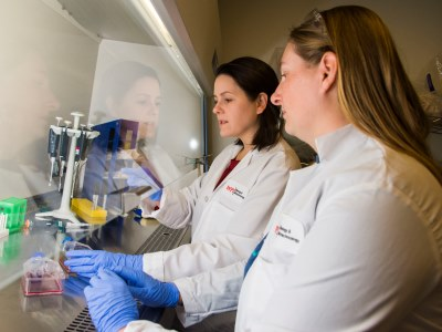 Manning and graduate student Liz Crowley prepare cell cultures for analysis.