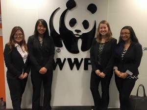 The project team: Yejee Choi, Amanda Agdeppa, Caitlin Burner, and Giselle Verbera.